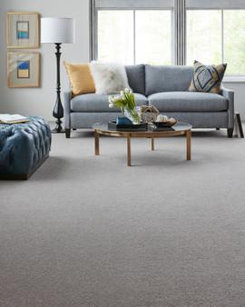 Artisan Delight Smart Strand Carpet by Karastan