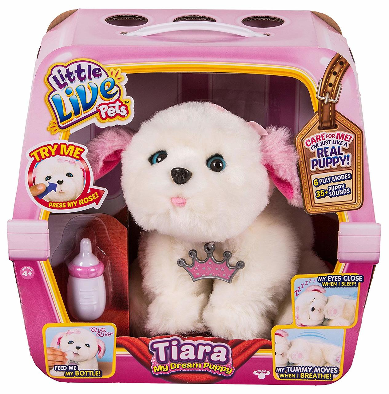 60e155be00381 Little Live Pets Tiara My Dream Puppy - Toymate