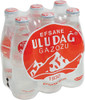 ULUDAG Gazoz (250ml x 6pc) [GA STORE PICK UP AND LOCAL DELIVERY PRODUCTS ONLY]