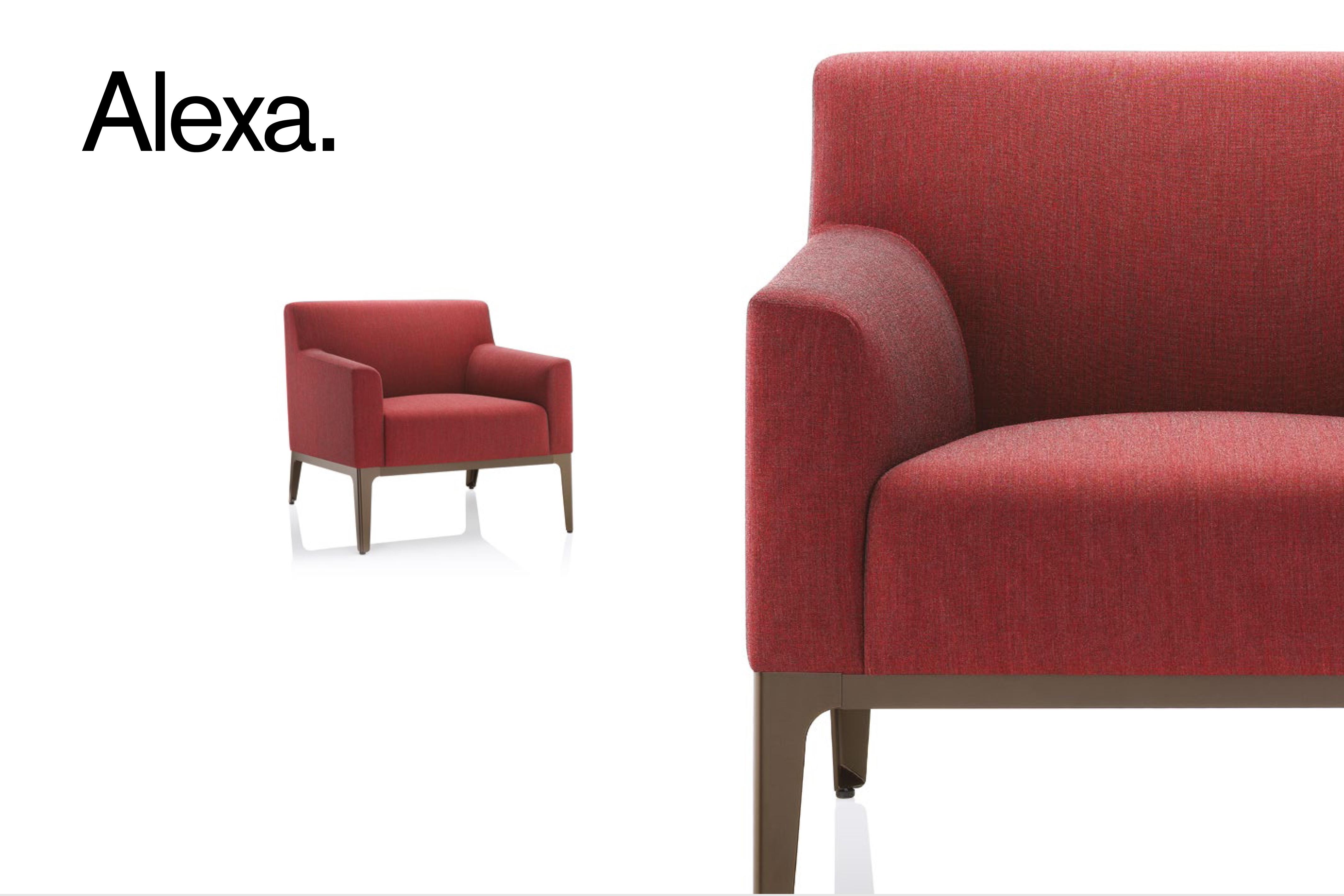 alexa-brochure-2.jpg