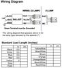 ICF-2S18-M1-BS Advance Compact Fluorescent Ballast - Wiring