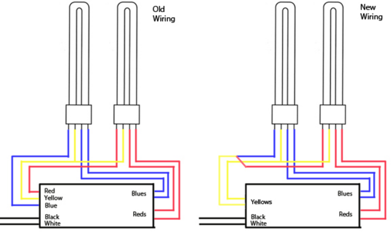 cfl 4 pin diagram the uptodate wiring diagram rh el ecxvlk patundchris de