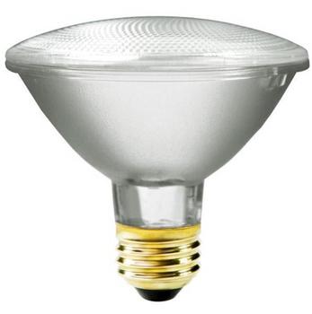 Plusrite 55 Watt PAR30 Flood Lamp