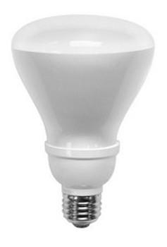 TCP 16 Watt R30 Floodlight