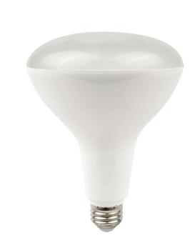 Plusrite LED-13W BR40 Lamp