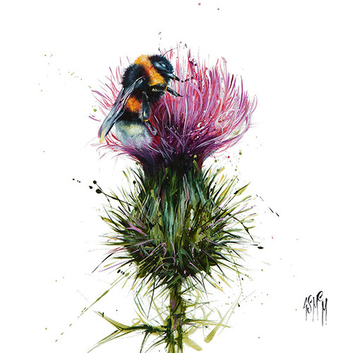 Highland Laddie (Limited Edition) by Georgina McMaster