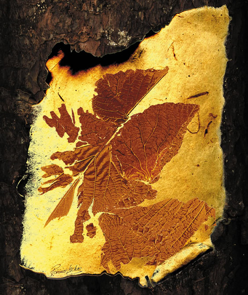 Amber Leaf is an Open Edition landscape print  by Scottish artist Ronnie Leckie