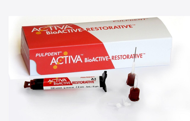 Activa BioACTIVE Restorative Single Refill Syringe 5ml