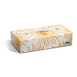 Facial Tissues 2 Ply 36x100/Boxes