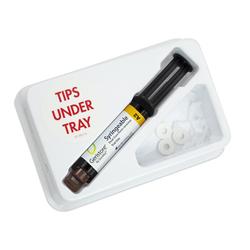 Geristore Syringe Intro Kit Shade A2