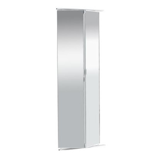 24 Inch Frameless Mirrored Bifold Door