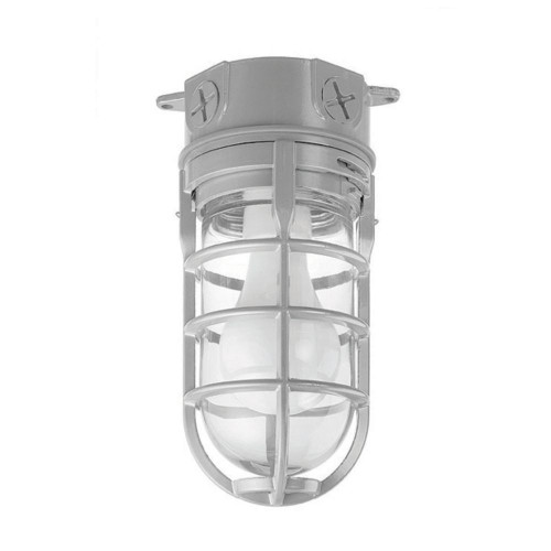 Metal Cage Light  Ceilling Mount