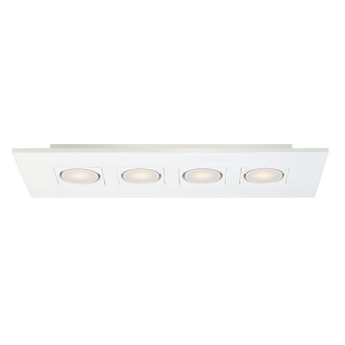 4 Light Linear LED Surface Mount