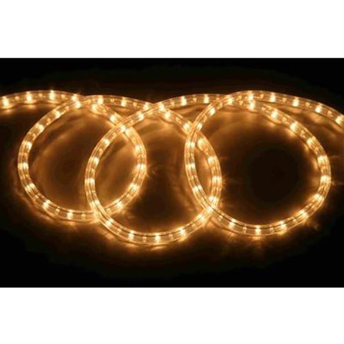 12FT Rope Light Kit - Clear