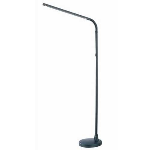 1 Light Floor Lamp Black Finish