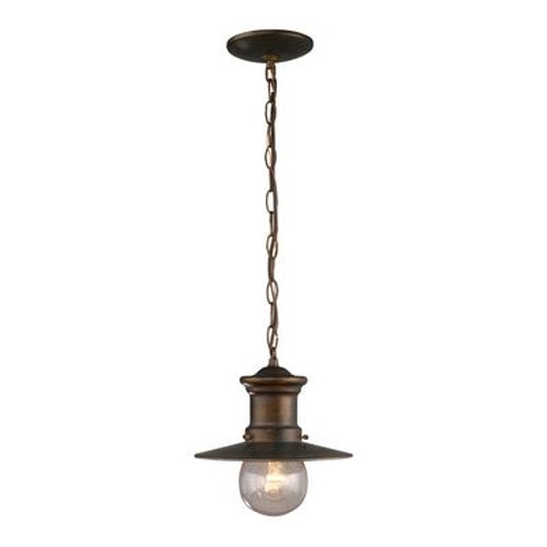 1-Light Outdoor Hazelnut Bronze Pendant