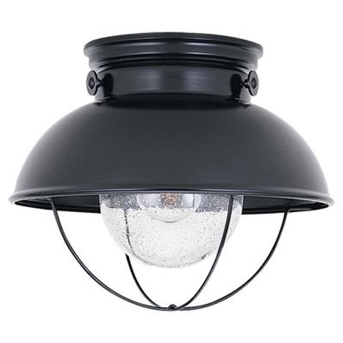 1 Light Black Incandescent Outdoor Ceiling Fixture