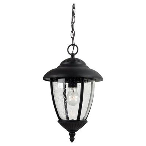 1 Light Black Incandescent Outdoor Pendant