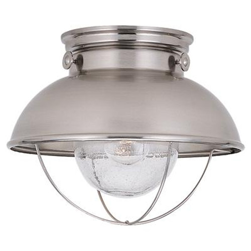 1 Light Brushed Stainless Incandescent Outdoor Ceiling Fixture