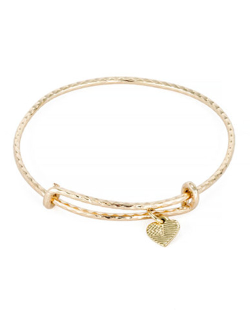 Alex And Ani America the Beautiful Collection Gold Plated  No Stone Bangle - Gold
