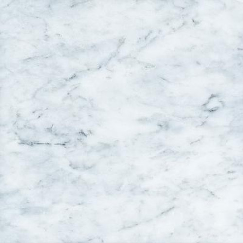 12 In. x 12 In. Bianco Polished Marble