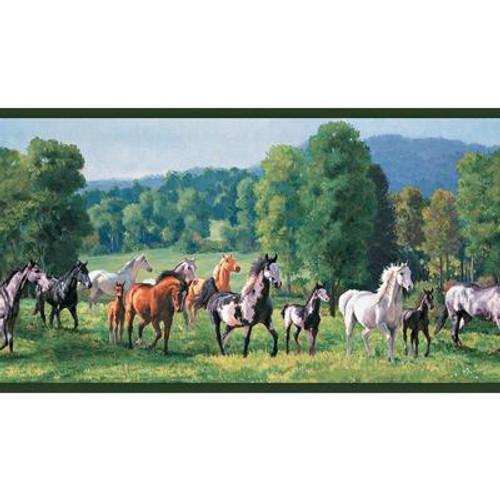 10.25 In. H Jewel Tone Wild Horses Border