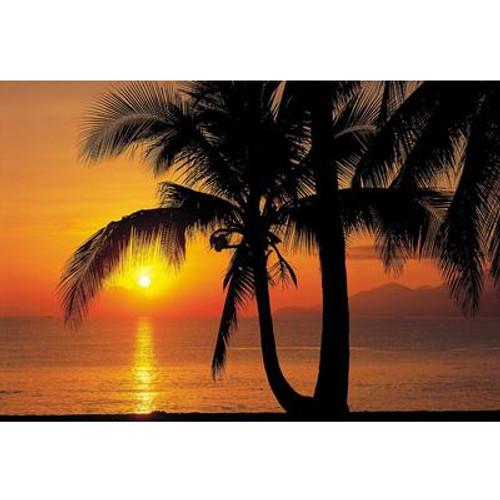 12 Feet 1 Inches x 8 Feet 4 Inches Palmy Beach Sunrise Wall Mural