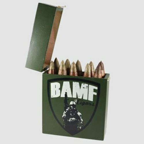 """Connecticut Box of 10  """"5.56 Green Tip"""""""