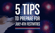 5 Tips to Prepare Your Anxious Dog for Fireworks