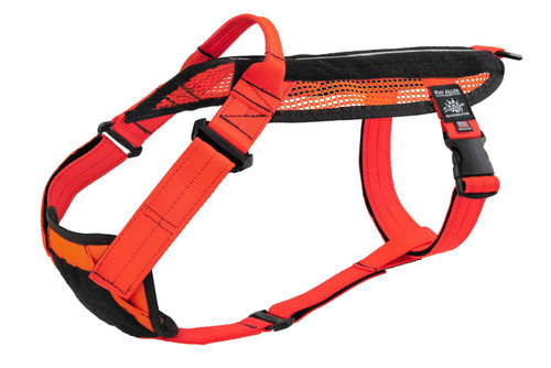 SAR Harness