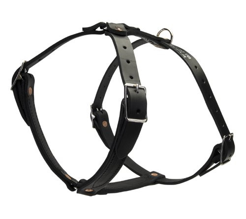 Tac-Black Leather Non-Padded Tracking Harness