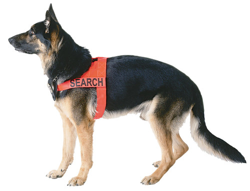 Search and Rescue Harness - Orange
