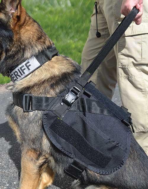 Assist Harness Accessories