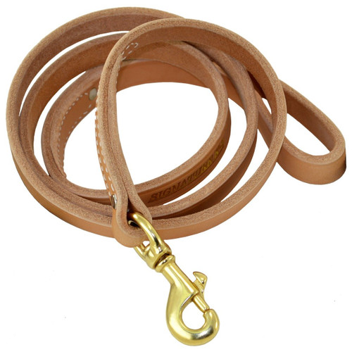 Harness Leather Leash