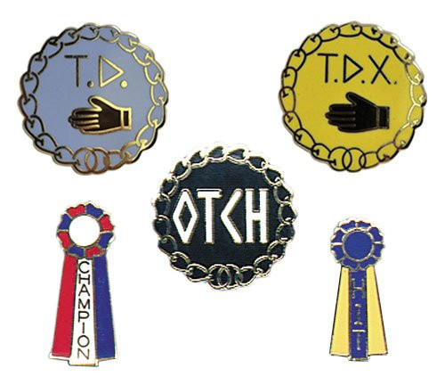 Degree Pins - TDX