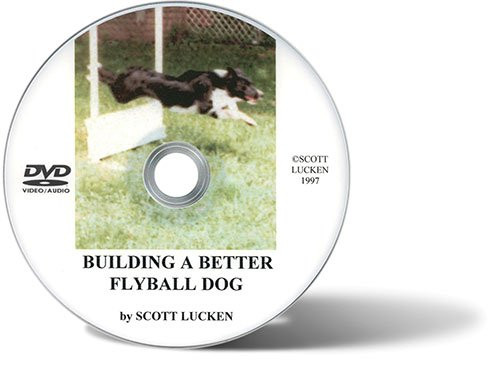 Building A Better Flyball Dog DVD
