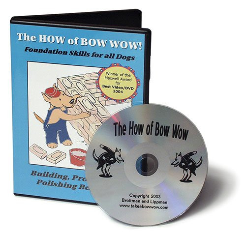 The How Of Bow Wow DVD