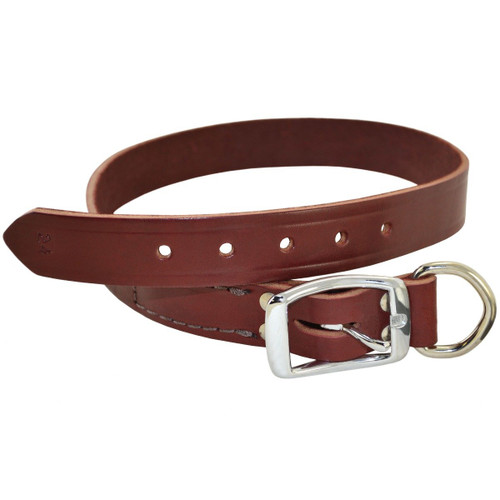Burgundy Latigo Buckle Dog Collar