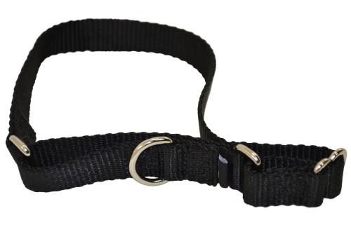 Nylon Premier Collars