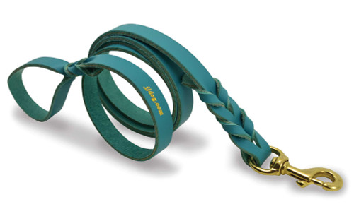 Teal Braided Dog Training Leash