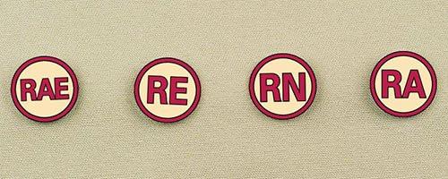 Rally Degree Pins