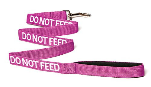 Friendly Dog Awareness Leash
