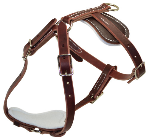 Leather Lite Tracking Harness