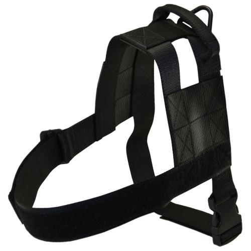 Modular Harness