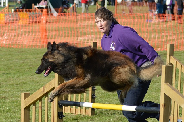 woman running agility with dog