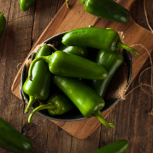 Green Whole Jalapeno Chilllies 2.8kg Wholesale Image