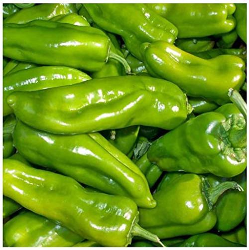 Cubanelle Sweet Pepper 10 Seeds