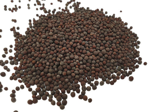 Organic Black Brown Mustard Seeds Image by SPICESontheWEB