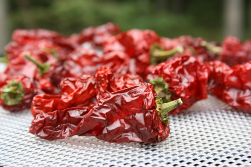 Chimayo Chilli Image, Chillies on the Web
