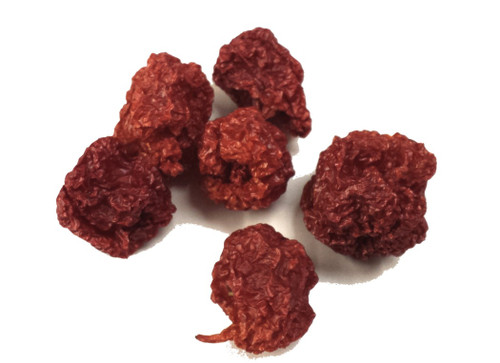 Carolina Reaper Chilli Image, Chillies on the Web